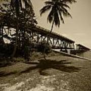 Railroad  Bridge In Sepia Poster