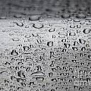 Rain Drops On Stainless Steel Poster