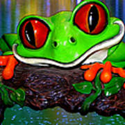 Rain Forest Frog Poster