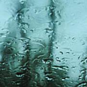 Rain On Bare Trees Poster