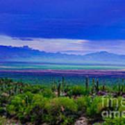 Rainbow Desert Landscape Poster