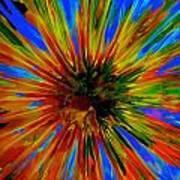 Rainbow Exuberance Poster