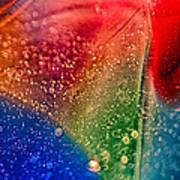 Rainbow Fishtail Poster