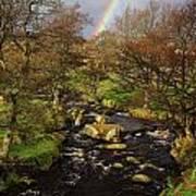 Rainbow River Poster