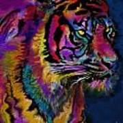 Rainbow Tiger Variant Poster