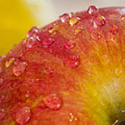 Raindrops On An Apple Poster