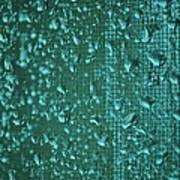 Raindrops On Window Iv Poster