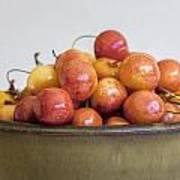 Rainier Cherries And Ceramic Bowl Poster