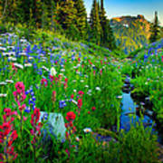 Rainier Wildflower Creek Poster