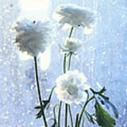 Raining Day  Poster by Etti PALITZ