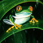Rainy Day Frog Poster