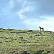 Rapa Nui Horse Poster
