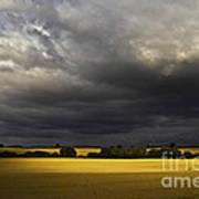 Rapefield Under Dark Sky Poster