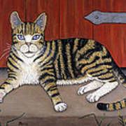 Rascal The Cat Poster