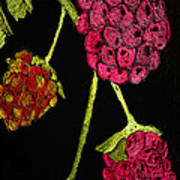 Raspberry Fabric Poster