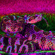 Rattlesnake 20130204m80 Poster by Wingsdomain Art and Photography