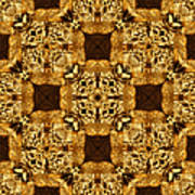Rattlesnake Abstract 20130204p0 Poster by Wingsdomain Art and Photography