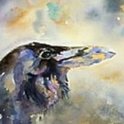 Raven I Poster
