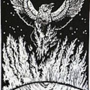 Raven Stealing Fire From The Sun - Woodcut Illustration For Corvidae Poster
