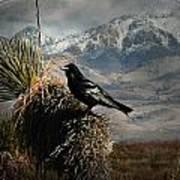 Raven Storm Poster