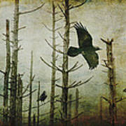 Ravens Of The Mist Artistic Expression Poster