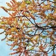 Reaching Autumn Poster