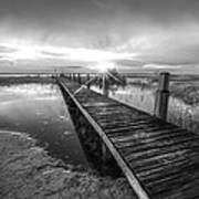 Reaching Into Sunset In Black And White Poster