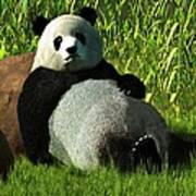 Reclining Panda Poster