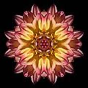 Red And Yellow Dahlia Iv Flower Mandala Poster
