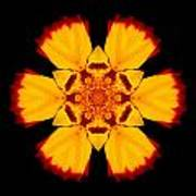 Red And Yellow Marigold II Flower Mandala Poster