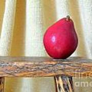 Red Anjou Pear Poster