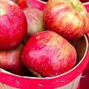 Red Apples In Baskets At Farmers Market Poster