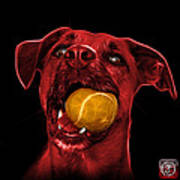 Red Boxer Mix Dog Art - 8173 - Bb Poster