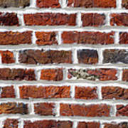 Red Brick Wall Poster