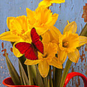 Red Butterfly On Daffodils Poster