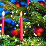Red Candles In Christmas Tree Poster