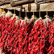 Red Chili Ristras Poster
