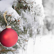 Red Christmas Ornament On Icy Tree Poster