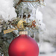 Red Christmas Ornament On Snowy Tree Poster