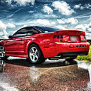 Red Cobra Rearview In Hdr Poster