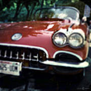 Red Corvette With Trees Poster