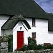 Red Door Thatched Roof Poster