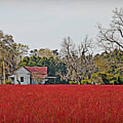 Red Field Poster