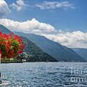 Red Flowers By Lake Como Italy Poster by Anna-Mari West