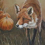 Red Fox With Pumpkins Poster