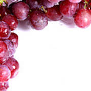 Red Grapes With White Copy Space Poster