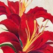 Red Lilies Poster