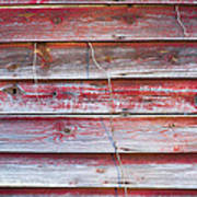 Red Mold Siding Poster