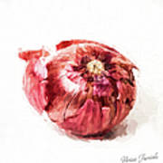Red Onion Poster