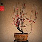 Red Plum Blossoms Poster